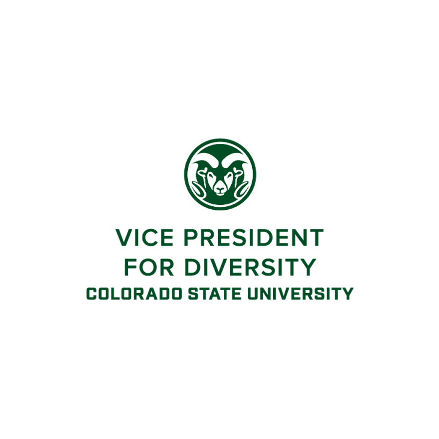 Vice President for Diversity Logo
