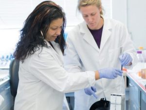Assistant Professor Rushika Perera and graduate student Rebekah Gullberg at work at the Arthropod-borne and Infectious Diseases Laboratory.