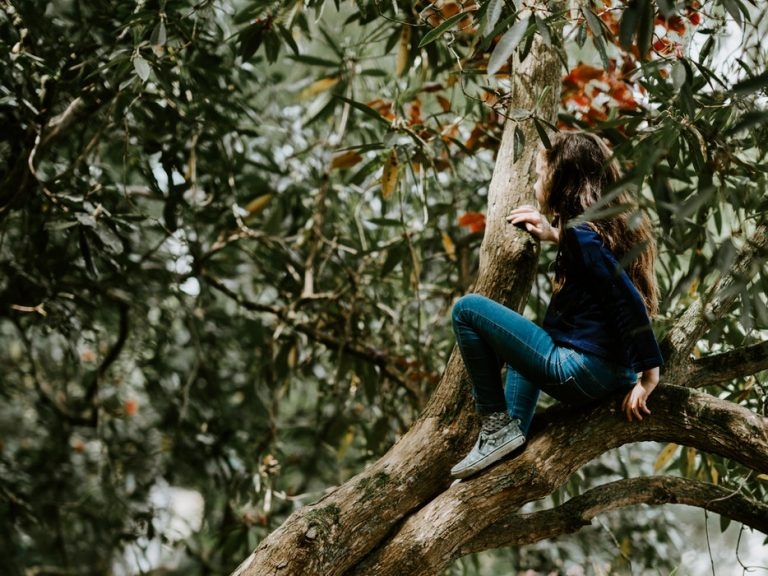 young girl climbing a tree