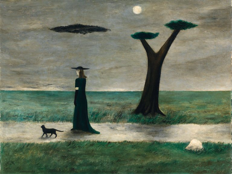 a witch walks with a dog